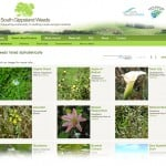 South Gippsland Weeds Gallery screenshot